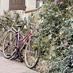 Vélo à Antibes by sallyheis - Antibes 06600 Alpes-Maritimes Provence France