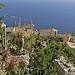 Vue sur la côte depuis le village d'Eze by pizzichiniclaudio - Eze 06360 Alpes-Maritimes Provence France