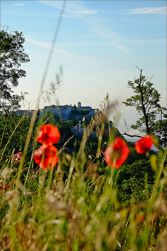 Gourdon dominant ses coquelicots by Andrey Tonnelier