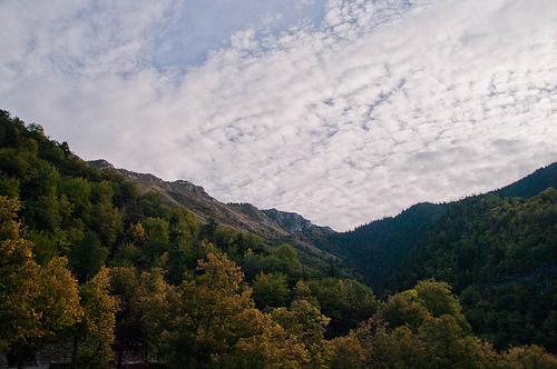 Col de Turini dans le Mercantour by jdufrenoy