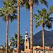 Palmiers et clocher - Menton par www.tourisme-menton.fr - Menton 06500 Alpes-Maritimes Provence France