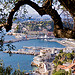 Port de Nice vu des hauteurs de la ville par russian_flower - Nice 06000 Alpes-Maritimes Provence France
