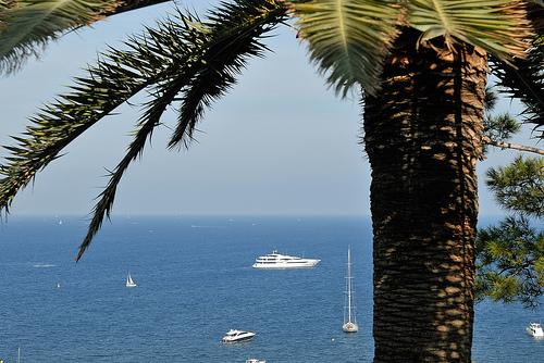 La côte d'azur : palmier, yatch et mer bleue par pizzichiniclaudio