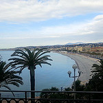 Nice beach, palm by  - Nice 06000 Alpes-Maritimes Provence France