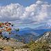 Vue du Mont-Agel vers les Alpes par Charlottess - Peille 06440 Alpes-Maritimes Provence France