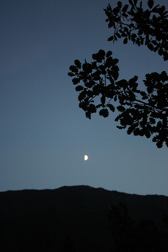 Moonlight of September by Sokleine