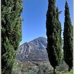 Cyprès, Verticaux - Sospel by Charlottess - Sospel 06380 Alpes-Maritimes Provence France