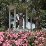 Villa Ephrussi de Rothschild - la roseraie par M Barbéro - St. Jean Cap Ferrat 06230 Alpes-Maritimes Provence France