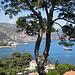 Baie de Saint-Jean Cap Ferrat by motse@yahoo.com - St. Jean Cap Ferrat 06230 Alpes-Maritimes Provence France