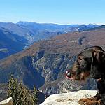 La vallée du Var, les Gorges du Cians par bernard BONIFASSI - Thiery 06710 Alpes-Maritimes Provence France
