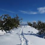 Belles traces par bernard BONIFASSI - Thiery 06710 Alpes-Maritimes Provence France
