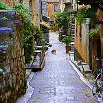 Ruelle à Tourrettes-sur-Loup, Provence by marty_pinker - Tourrettes sur Loup 06140 Alpes-Maritimes Provence France