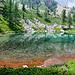 Lac des Adus par BazaDuSud - Valdeblore 06420 Alpes-Maritimes Provence France
