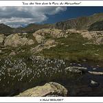 Lac des Vens - dans le Parc du Mercantour par michel.seguret -   Alpes-Maritimes Provence France