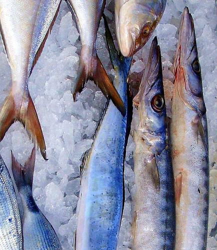 Fish market by krissdefremicourt