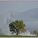 Matinée d'automne au pied de Lure by Rhansenne.photos - Banon 04150 Alpes-de-Haute-Provence Provence France