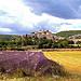 Arrivée sur Banon par Qtune - Banon 04150 Alpes-de-Haute-Provence Provence France