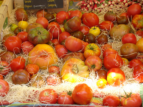 Tomates d'origine de Provence by UniqueProvence
