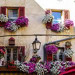 Symphonie en fleurs sur facade par CTfoto2013 - Barcelonnette 04400 Alpes-de-Haute-Provence Provence France