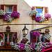 Symphonie en fleurs sur facade par  - Barcelonnette 04400 Alpes-de-Haute-Provence Provence France