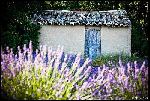 Cabanon provençal by Michel-Delli