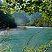 Le Verdon à travers les feuilles - Castellane par Charlottess - Castellane 04120 Alpes-de-Haute-Provence Provence France