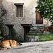 Repos au Gite de Chasteuil par Colin Bainbridge - Castellane 04120 Alpes-de-Haute-Provence Provence France