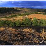 Fin de journée dans la solitude du plateau d'Entrevennes by Rhansenne.photos - Entrevennes 04700 Alpes-de-Haute-Provence Provence France