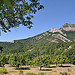 Les poiriers - Hautes-Duyes by Charlottess - Hautes Duyes 04380 Alpes-de-Haute-Provence Provence France