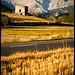Contrastes au Col de l'ourme / Estrop par Michel-Delli - Le Brusquet 04420 Alpes-de-Haute-Provence Provence France