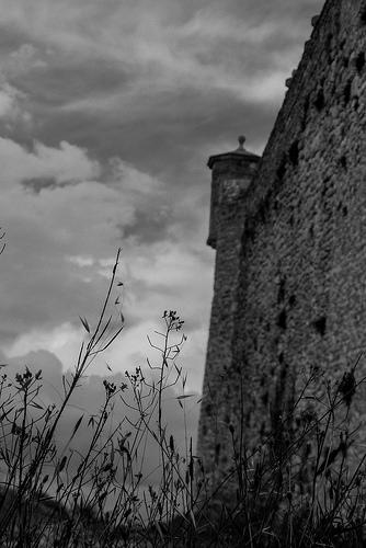 Tour de guet du château de Mane by CTfoto2013