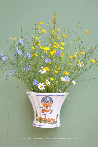 Typical Moustiers faïence (Hanging flower pot) par Belles Images by Sandra A.