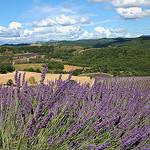 Paysage de Puimichel par Charlottess - Puimichel 04700 Alpes-de-Haute-Provence Provence France