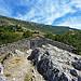Maisonette de pierres à Rougon par nic( o ) - Rougon 04120 Alpes-de-Haute-Provence Provence France