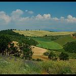 Patchwork de Provence par Patchok34 - Sigonce 04300 Alpes-de-Haute-Provence Provence France
