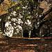 Chapelle de Lure by Patrick.Raymond - St. Etienne les Orgues 04230 Alpes-de-Haute-Provence Provence France