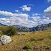 Autour du Dromont par Géo-photos - St. Geniez 04200 Alpes-de-Haute-Provence Provence France