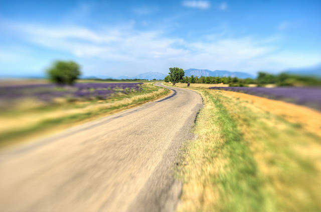 Sur la route, enivré par la lavande (Alpes-de-Haute-Provence - St. Jurs) par yesmellow