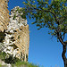 Ruines et ciel bleu à Saint Naime par Margotte apprentie naturaliste 2 - St. Maime 04300 Alpes-de-Haute-Provence Provence France