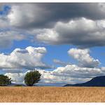 Valensole par Manuel.A.69 - Valensole 04210 Alpes-de-Haute-Provence Provence France