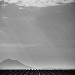 Plateau de Valensole en noir et blanc par Stéphan Wierzejewski - Valensole 04210 Alpes-de-Haute-Provence Provence France