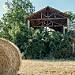 Rouleau de paille par lolotorino - Valensole 04210 Alpes-de-Haute-Provence Provence France