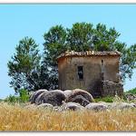 Ballots de foin en Provence par CHRIS230*** - Valensole 04210 Alpes-de-Haute-Provence Provence France