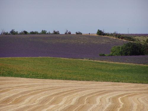 Jeux de couleurs provençal par Locations Moustiers