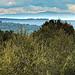 Ventoux vu du massif du Montaiguet par bruno Carrias - Aix-en-Provence 13100 Bouches-du-Rhône Provence France