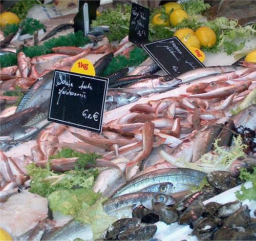 Marché : étalage de poissons par Elisabeth85