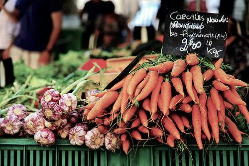 Carrots (carottes nouvelles plein champ) par 6835