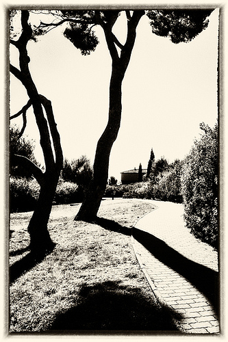 Chez Paul Cézanne en mode graphique N&B par pierre.arnoldi
