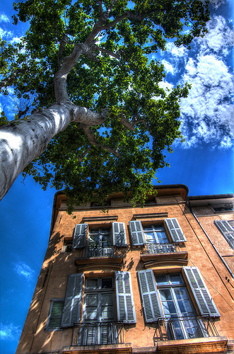 Soleil d'Aix en Provence by feelnoxx