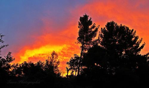 Quand le ciel de la Provence s'enflamme! par Tinou61